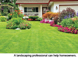 Thinking About New Landscaping for Your Home?