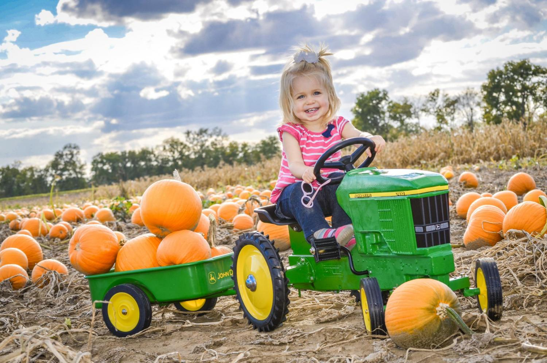 10 Local Pumpkin Patches
